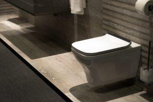 ideale toilet